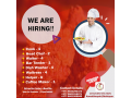 vacancy-for-restaurant-small-0