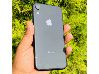 Iphone xr dual