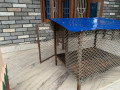 dog-cannel-house-small-0