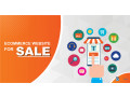 ecommerce-site-form-10k-20-k-small-0